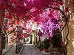 Майски празници на остров Корфу