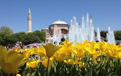Фестивал на лалето в Истанбул