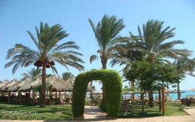 Continental Hurghada Resort 5* PREMIUM